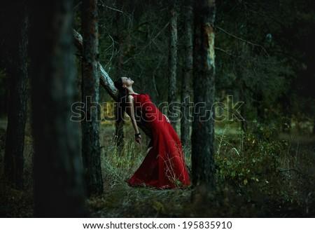 Portrait of romantic brunette girl in fairy wood - stock photo