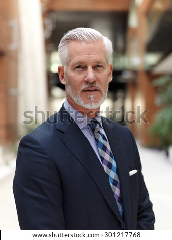 portrait of senior business man with grey beard and hair alone i modern office indoors - stock photo