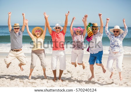 Portrait of senior friends at the beach on a sunny day