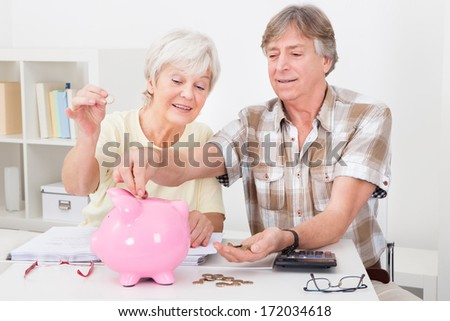 Portrait Of Smiling Senior Couple Calculating Coins In The Pink Piggybank - stock photo