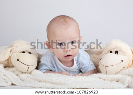 Portrait of sweet little baby boy with a sheeps - stock photo
