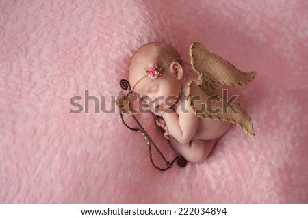 Portrait of ten day old newborn baby girl. She is wearing a Cupid costume with angel wings, bow and arrow and is sleeping on light pink lace material.  - stock photo