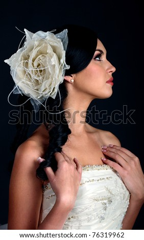 Portrait of the beautiful bride on a dark background - stock photo