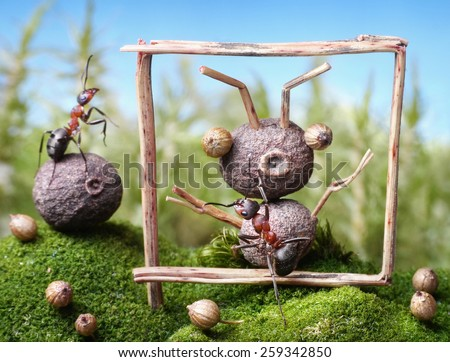 portrait of the friend, ant tales - stock photo