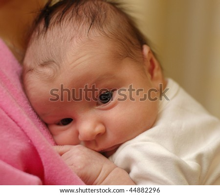 portrait of the newborn on brown background