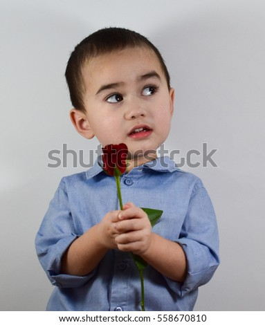 Portrait of the shy boy holding rose on white background.