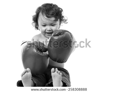 Portrait of the small boxer on a white background. - stock photo