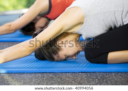 Portrait of young nice women getting busy in gym
