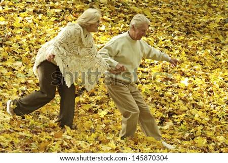 Portrait older couple walking in the autumn park - stock photo