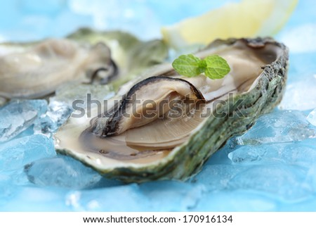 portuguese clams traditional dish-mediterranean diet - stock photo