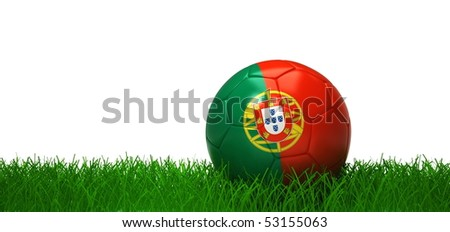 Portuguese soccer-ball lying in grass
