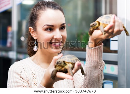 Positive female customer watching two small tortoises in petshop - stock photo