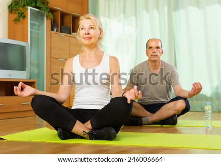 Positive senior couple doing asana in the living room at home - stock photo