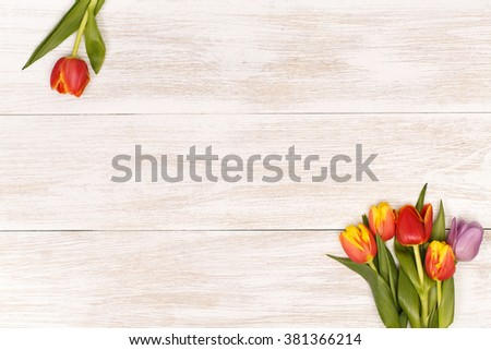 Post blog social media 8 march. View from above with copy space. Banner template layout mockup for woman day. White wooden table with tulips. festive bouquet for greeting card with place for text - stock photo