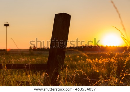 Post of a fence at sunset in front of a lawn, stork's nest in the background
