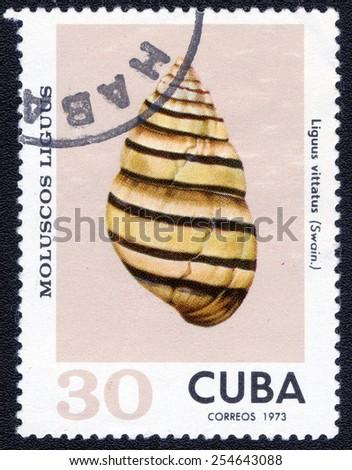 Postage stamp Cuba 1973 Liguus Vittatus Shell - stock photo