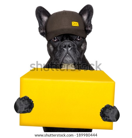 postal dog delivering a big yellow package - stock photo