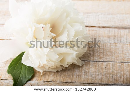 Postcard with fresh flowers  - stock photo