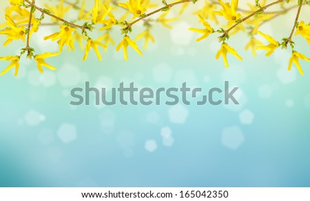Postcard with fresh flowers and empty place for text. Abstract background for design. - stock photo
