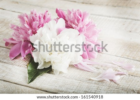 Postcard with fresh flowers peony on wooden background. Retro style. Selective focus. Postcard. - stock photo