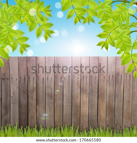 Postcard with fresh foliage  and place for your text. Abstract background for design.