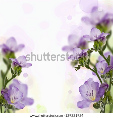 Postcard with lilac freesia - stock photo