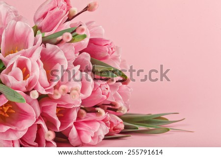 poster of bouquet of pink tulips on pink background - stock photo