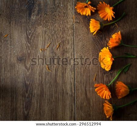 Pot Marigolds or English Marigolds (Calendula officinalis), fresh blossoms on wooden background - stock photo