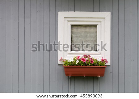 Pot of ornamental plants on the window in the old wooden houses painted wall.