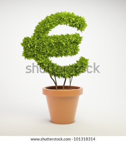 Pot plant shaped like a Euro currency symbol
