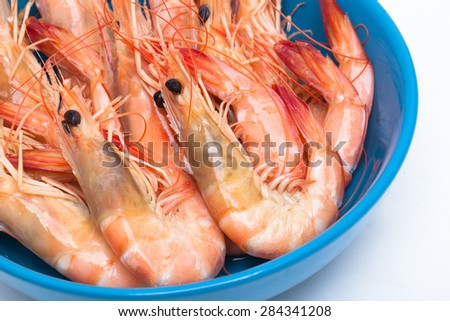 Pot prawn isolated on a white background - stock photo