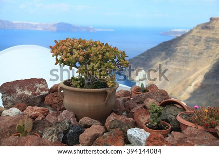 Pot with a flower among stones on the island Santorini - stock photo