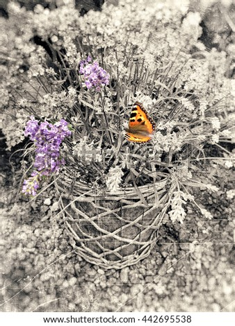 Pot with purple flowers and orange butterfly and the rest textured in soft vintage sepia tones with scratches and stains. - stock photo