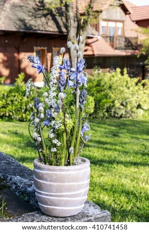 Pot with spring flowers in the garden. Beautiful decoration with fresh plants.