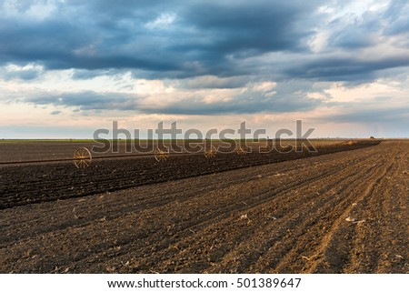 Potato field with irrigation system, right after seeding