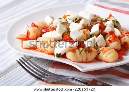 potato gnocchi with tomato sauce and mozzarella closeup. horizontal   - stock photo