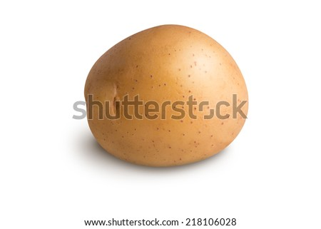 Potato isolated on white background - stock photo