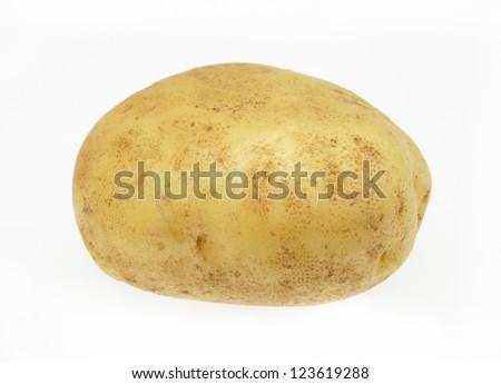 potato isolated on white background close up - stock photo