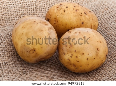Potato on the sacking material - stock photo