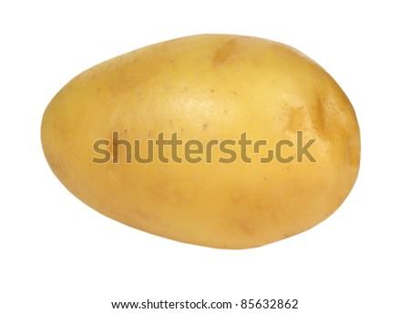 potato on white background - stock photo