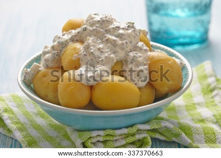 Potato Salad With Sour Cream Sauce With Mustard Seeds Pickles Dill Chives And
