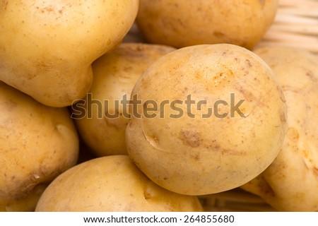 Potato-Solanum tuberosum  - stock photo