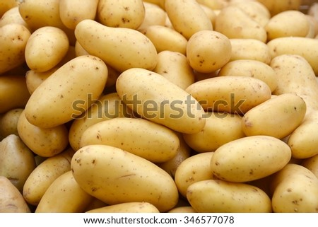 Potatoes. Fresh potatoes. Potatoes on market. Potatoes. Potatoes background. Potatoes vegetable.  - stock photo