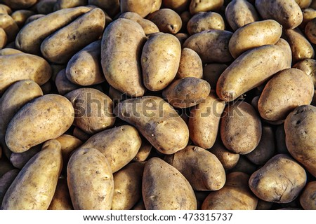 potatoes raw vegetables food in market