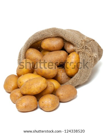 potatoes spilling from burlap bag isolated on white - stock photo