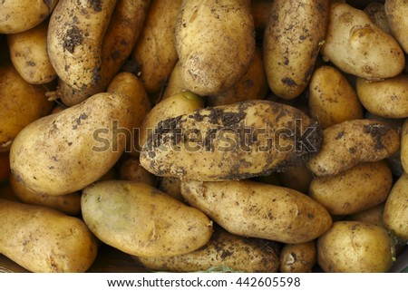 potatoes with dirt