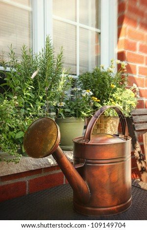 Pots of flowers and herbs on window ledge - stock photo