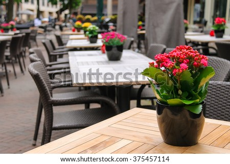 Pots with decorative flowers on the tables of outdoor street cafe - stock photo