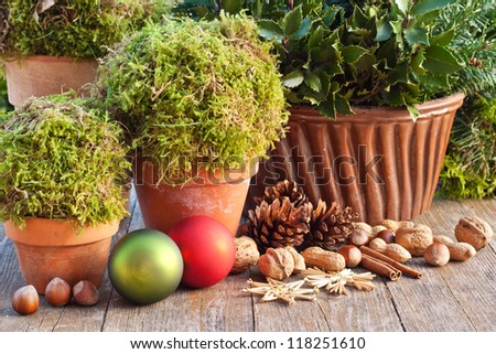 pots with moss, apples, pine cones,nuts/christmas/decoration - stock photo
