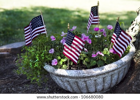Potted plant outdoors leaning on tree with American Flags - stock photo